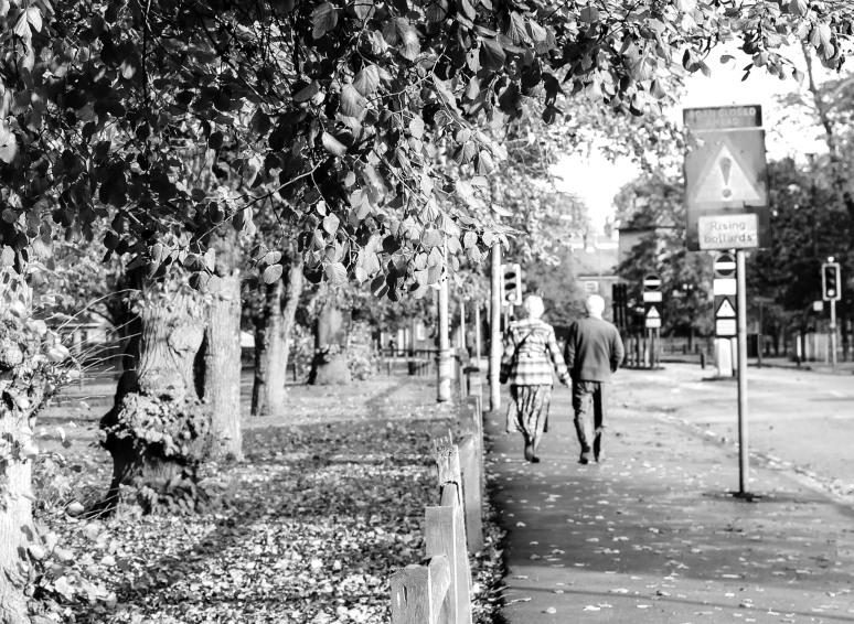 Cambridge stroll