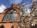 Coventry sunshine spring